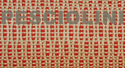 82. pesciolini, rosso-corda, nome
